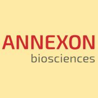 ANNX logo