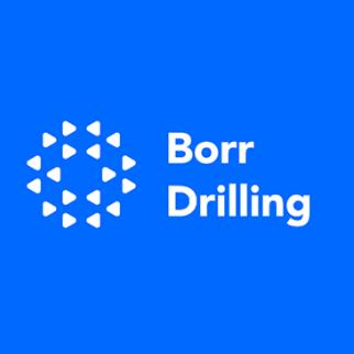BORR logo