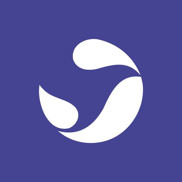 SNYNF logo