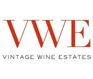 VWE logo